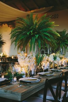 Tropical Wedding Centerpieces, Tropical Wedding Decor, Outdoor Wedding Decorations, Wedding Themes, Fern Wedding, Art Deco Wedding, Floral Wedding, Wedding Flowers, Dream Wedding