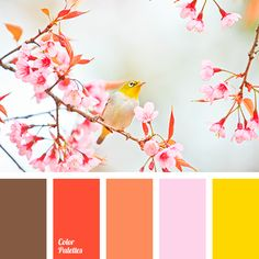 Colorful, vivid and fresh palette. With spring bright colors come and it becomes easy and fine in one's soul. The trees come out, sun shines, the earth tha Colour Pallette, Colour Schemes, Color Combinations, Couleur Rose Pale, Lilac Color, Color Yellow, Pale Pink, Pink Brown, Color Balance
