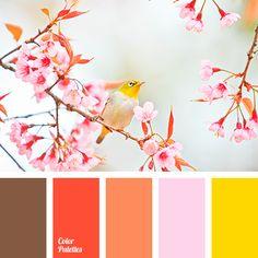 teintes roses : couleur jaune vif, couleur marron, jaune canari, la couleur de la carotte, couleur chocolat, la correspondance des couleurs, solution de couleur pour les concepteurs, couleur lilas, couleur orange, couleur rose pâle, la couleur rose, couleur rouge, couleur écarlate, couleur jaune.