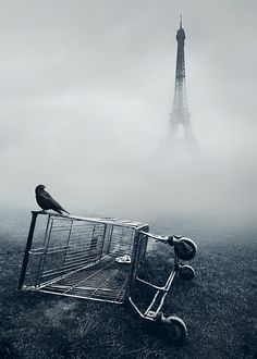 Paris photo manipulation, photo of the subject infront and placed in the fog is the Eiffel tower, very mysterious and leery. Black White Photos, Black And White Photography, Surrealism Photography, Art Photography, Stunning Photography, France Photography, Photography Backgrounds, Conceptual Photography, Exposure Photography