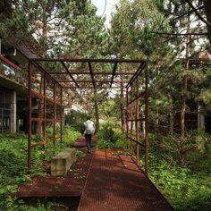 Landscape Gardening Diy Landscape Architecture Design Pdf.