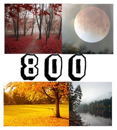 """""""Thank you for 800 followers"""" by xfallen-starsx ❤ liked on Polyvore featuring art"""
