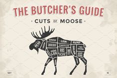 Butcher diagram, scheme - Moose by Foxys Graphic on Meat Butcher, Butcher Shop, Moose Meat, Moose Hunting, Moose Silhouette, Meat Shop, Funny Cartoons, Graphic Illustration, Carne