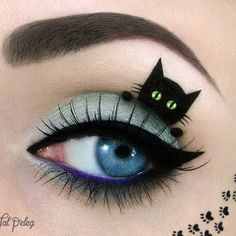 Kitty eye