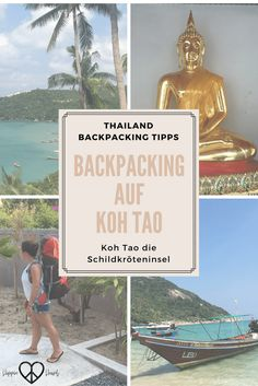 Backpacking in Thailand - Backpacking auf Koh Tao - Die Schildkröteninsel. Backpacking in Thailand, Reisen in Thailand, Koh Tao, Inseln in Thailand, Travel, Travel Thailand