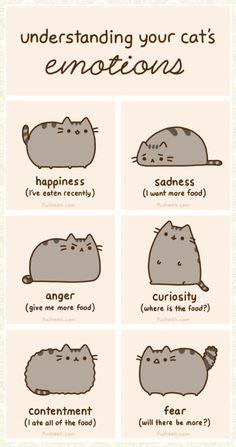 Cat emotions explored@Jennifer Mitchell@Judy Czarnecki@Brenda Gordon