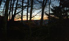 Morgenröte 10.12.16