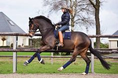 Huge uphill movement in this canter. And can we just take a moment to drool over her boots?