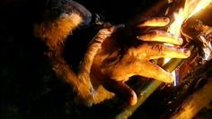 Como ativar a Legenda: http://hhide.me/KQO Titulo Original: Walking With Cavemen  Sinopse da Série: O filme definitivo sobre a evolução da espécie humana, contade de maneira revolucionária. Embarque em uma extraordinária jornada ao passado e descubra como nós nos tornamos quem somos hoje. Por meio de sofisticados efeitos especiais, computação gráfica e reconstituições precisas. Testemunhe como era a vida – e a morte – há milhões de anos.  Episódio 4: Os Sobreviventes (The Survivors) Há…
