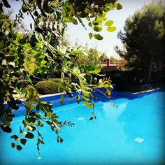 abba Garden hotel 4* en Esplugues de Llobregat, Cataluña