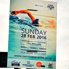 #Discovery Chelmsford Challenge 2016 Swimming Poster