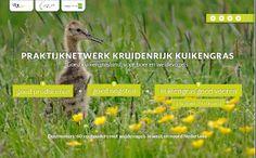 Bekijk de interactieve infographic van Kruidenrijk Kuikengras. Voor CLM, Water, Land & Dijken en Projecten LTO Noord. Bron: http://www.rotterdam-vormgeving.nl.