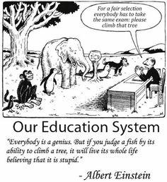 Everybody is a genius. -Albert Einstein