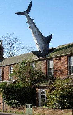 This is arguably the most famous occupant of Headington.  The Oxford Shark has lived at this address since 1986 despite efforts to evict him (as of 2006, at least).  His host is Bill Heine, who resisted efforts by the Oxford City Council to have him removed ever since he was installed.  He was created by sculptor John Buckley, and is 25' long. Now THAT'S a shark attack.