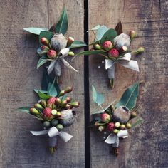 Swallows Nest Farm gumnut rustic native boutonniere Flowering Gum