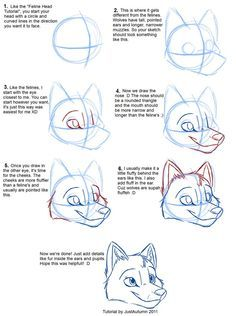 How to Draw Canines: Head by *JustAutumn on deviantART- FINALLY! a tutorial on how to draw furries! yay