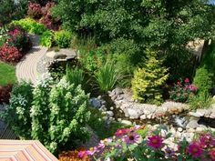 bassin de jardin avec une allée de jardin et plantes
