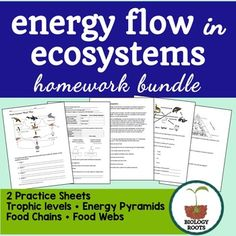 Two separate activities to use as homework or classwork for your ecology unit- great for middle school life science or high school biology. Activity for energy flow in ecosystems- food webs, food chains, energy pyramids, biomass, and more!