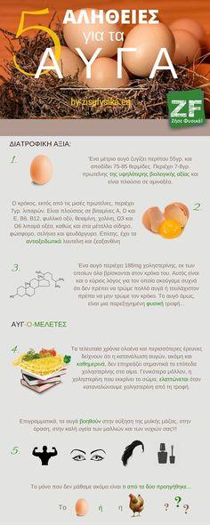 5 Αλήθειες για τα Αυγά | Ζήσε Φυσικά!