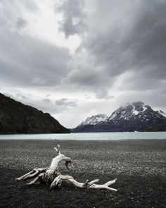 Patagonia, Not only a classy outdoor brand but a beautiful place.