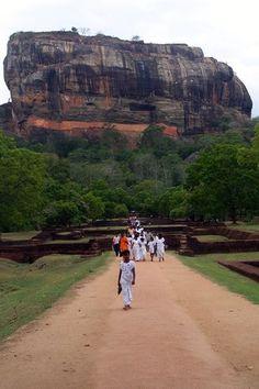 Sri Lanka, Asia Picture: Sri Lanka - Check out TripAdvisor members' 3,771 candid photos and videos of Sri Lanka