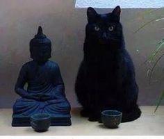 """仏像? """"Buddha statue ?"""""""
