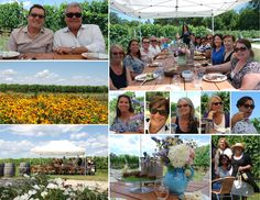TOWN & COUNTRY TOURS THE NORTH FORK   http://blog.1townandcountry.com/2015/07/24/town-country-tours-the-north-fork/