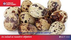 Los huevitos de codorniz aportan muchos más nutrientes que los huevos de la gallina, puesto que ofrece variados beneficios para nuestra salud...nuestra recomendación de hoy en nuestro blog. http://blog.clinicalimatambo.pe/2015/07/por-que-consumir-huevos-de-codorniz.html #ClinicaLimatambo