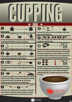 Has Bean Coffee — Cupping Brew Guide. #cupping #coffee