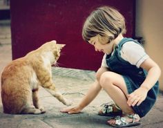 Red Alert! Having a Pet Cat Can Harm Your Child's Brain - WomansDay.com