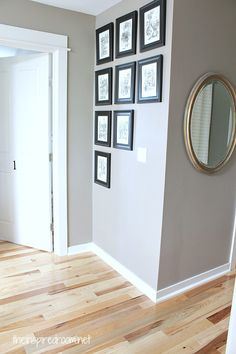 Paint colors for light wood floors hickory hardwood flooring and staircase makeover home decor flooring hardwood floors hardwood paint colors for living Fake Wood Flooring, Hickory Wood Floors, Grey Wood Floors, Light Hardwood Floors, Grey Walls, Flooring Ideas, Laminate Flooring, Flooring 101, Amtico Flooring