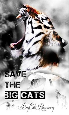 Save them - save them ALL <3