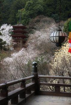 Hase-dera temple in spring, Nara, Japan