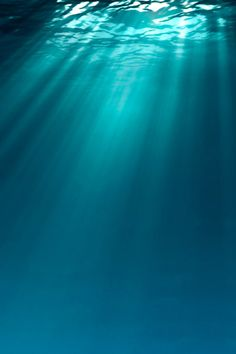 Ocean - sunlight shins to the bottom of the deep blue sea