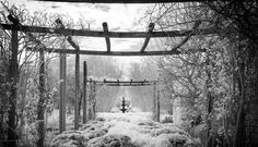 leannecole-infrared-photography-0200