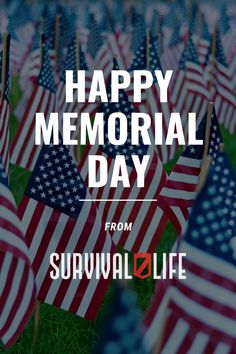 Happy Memorial Day from Survival Life! #memorialday #happymemorialday #survivallife Survival Blog, Survival Life, Survival Gear, Survival Skills, Happy Memorial Day, Emergency Preparedness, The Good Place, Memories, Memoirs