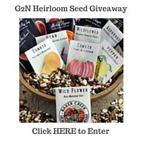Enter to win one of three gift cards ($30.00, $20.00 and $10.00) to buy any organic heirloom seeds of your choice from Baker Creek Heirloom Seed Company.  The giveaway ends April 29, 2016 and is open to US residents only.