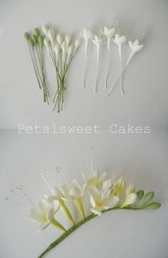 Freesia fondant - inspiration - links to cake/fondant flower pics