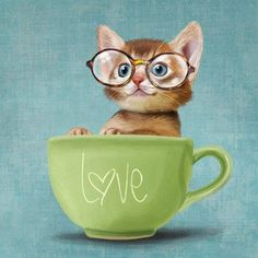 'Mr. Micio Miao - Kitten with Glasses' by Roberta Gianfarelli