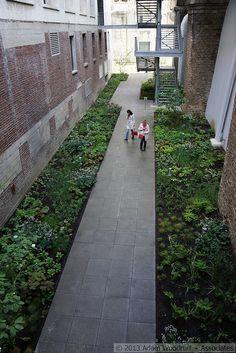 5 Culture Chanel Exhibit, The Garden // The Palais de Tokyo, Paris // Designer: Piet Oudolf // Images: 2013 Adam Woodruff + Associates Paris Design, Exhibit, Garden Landscaping, Chanel, Culture, Spaces, Landscape, Plants, Image