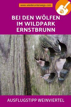 Deineseite in Ernstbrunn | healthtips2u.com