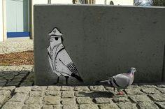 Vögel und so Pigeon Street, Birds, Animals, Image, Art, Art Background, Animales, Animaux, Kunst