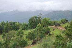 Serra do Tabuleiro