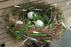 Osternest mit Strausseneiern und Narzissen Daffodils, Eggs, Easter Activities