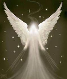 Risultati immagini per angel photos