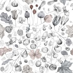 Wild in My Garden - Wall Mural & Photo Wallpaper - Photowall