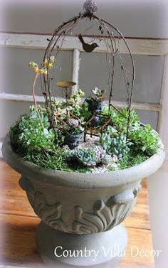 COUNTRY VILLA DECOR: Succulent Mini-Gardens | Jeremie arbor, tiny bird, chairs, birdbath and urns in a beautiful container.