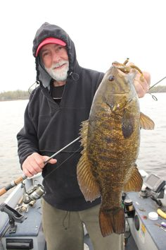 Solutions for Smallmouth Bass Jigs