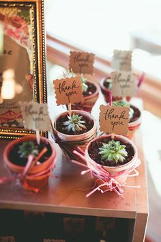 Potted succulents as wedding favors for guests | Julia & Chris: Organic Chemistry - A Rock Springs Ranch Wedding | orbridemag.com | Jamie Jones Photography