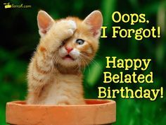 Image result for Happy belated glitter graphics for cats